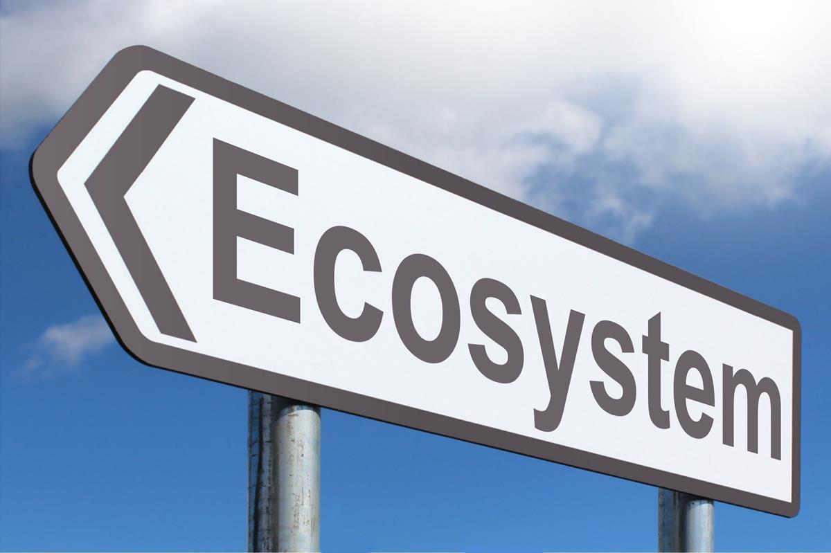 Ecosystems 9